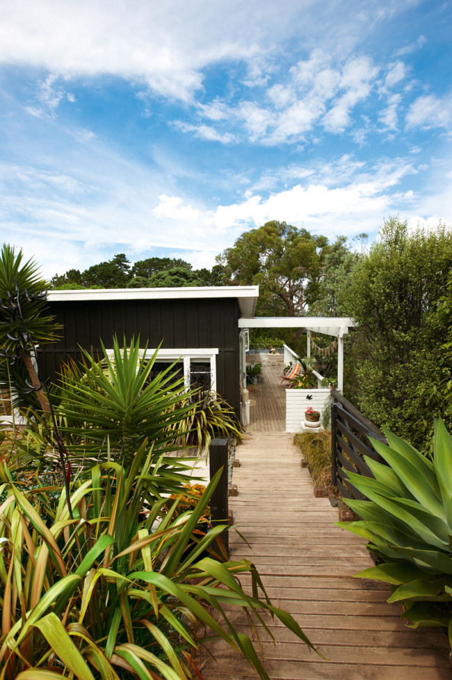 Vintage 1950s seaside shack in new zealand for Beach house builders new zealand