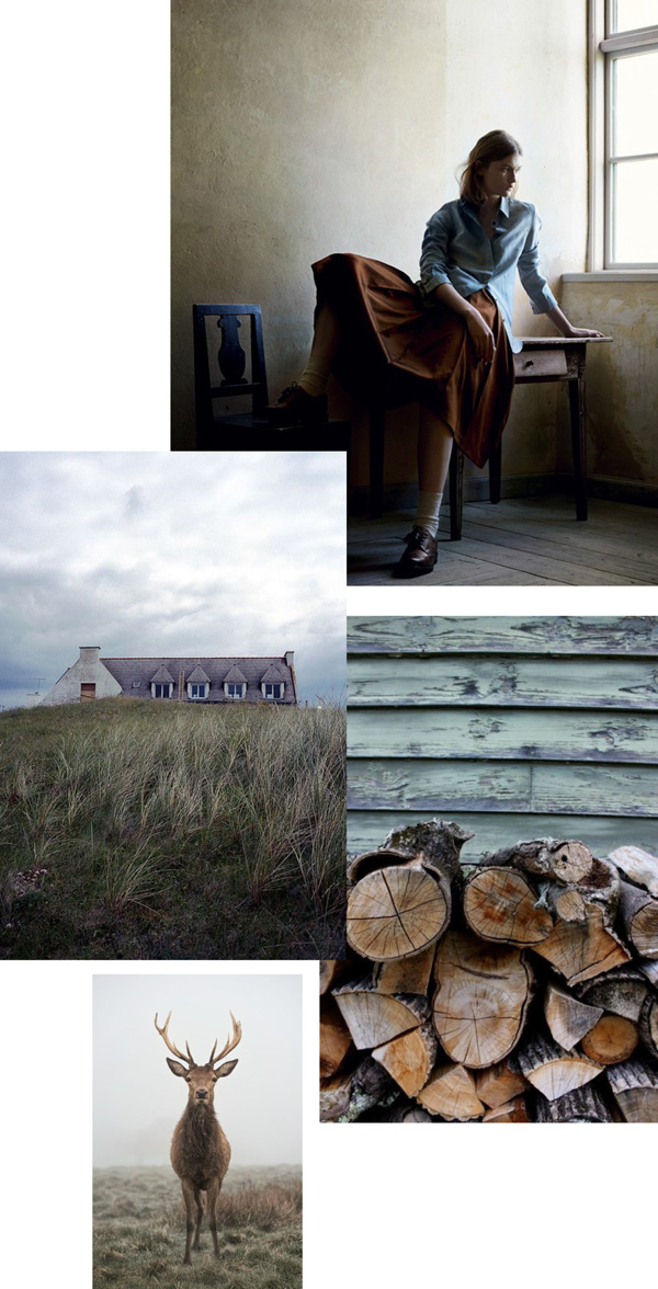 fall, vibes, toast, aw14, textures, cozy, warmth, pinterest, trends, styling, autumn, mood board, cold, look book, materials, photography, comfort, modern rustic, muted colours, style,