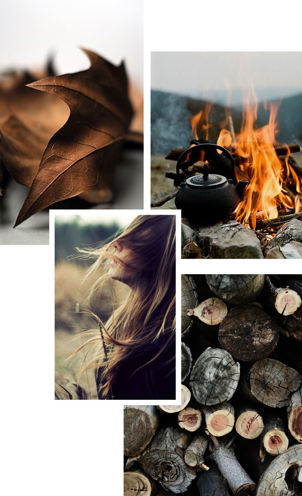mood board, autumn, vibes, function and form, event, wild boys and girls, kids decor, wood, fire, warmth, wind, leaves, brown, earthy tones