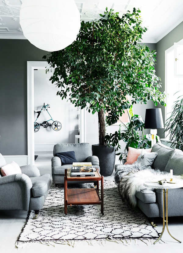 ggreen oasis, tree, interior, design, interior style, styling, decor, wall art, gallery wall, ornamental plants, statement piece, quirky touch, striking, impact, cophenhagen, period building