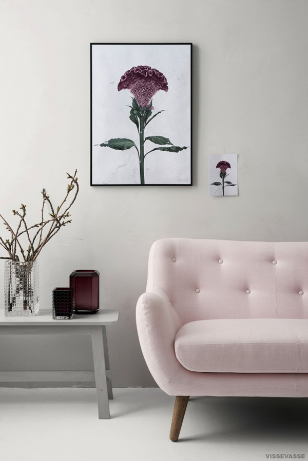 styling, style, plants, botanica, botanical portraits, soft, pastel, vee speers, australian artist, danish, vissevasse, shop, shopping, thirteen, birthday party